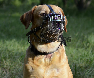 Adjustable Strong Metal Wire Basket Dog Muzzle for Labrador and Golden Retriever