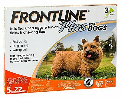 Merial Frontline Plus Flea and Tick Control for 5 22 Pound Dogs Puppies 3 Pack