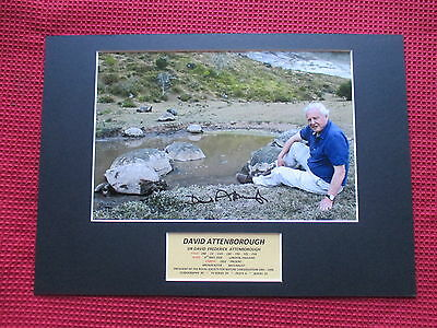 Sir David Attenborough Naturalist Genuine Hand Signed A3 Mounted Display - Coa
