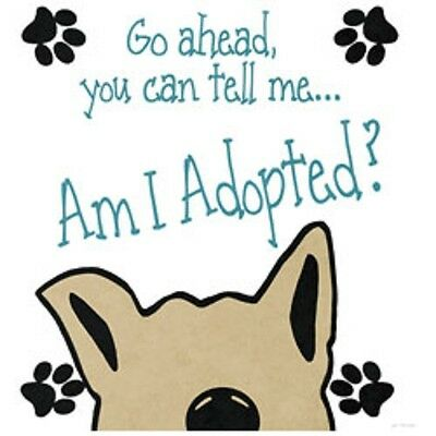 Tell Me  Am I Adopted?  Dog Tshirt   Sizes/Colors