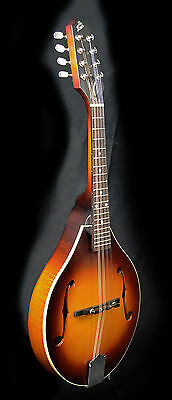 The Loar LM-290 A Style Mandolin with Case
