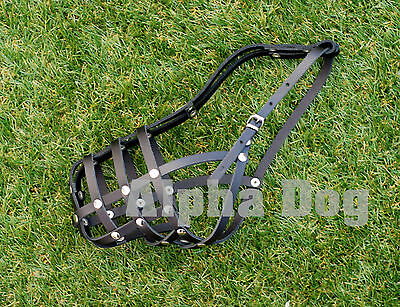 Leather Muzzle for Husky,Standard  Poodle