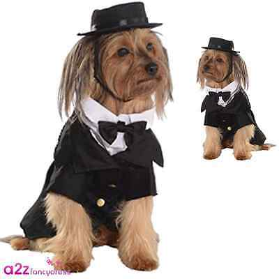 Dapper Dog Black Tie Suit Tuxedo Wedding Novelty Funny Gift Party Costume Outfit