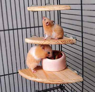 Sector Wooden Pet Resting Stand Perches Plateform For Birds Hamster Totoro US