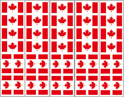 40 Tattoos: Canadian, Canada Flag, Party Favors