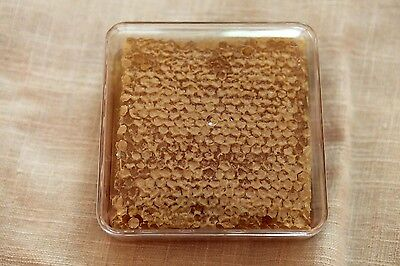HoneyComb 100% Pure Raw unfiltered Honey Comb Kosher Aprox. 360gr.