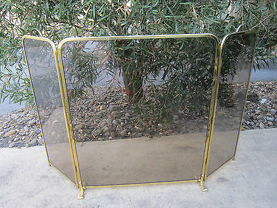 Very Solid Brass And Smoked Glass Winged Fire Spark Screen