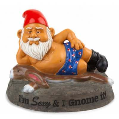Novelty Naughty Garden Gnomes Outdoor Statues Ornaments Funny Christmas Gift