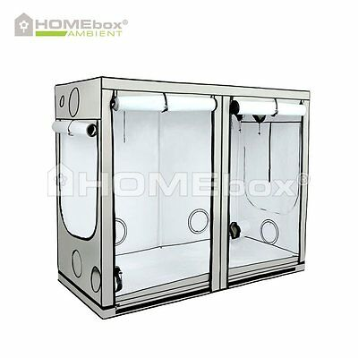 HOMEbox AMBIENT R240 240 x 120 x 200cm Grow Eastside Impex Growbox Growschrank