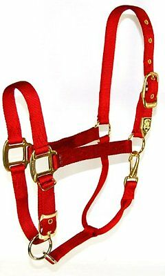 Hamilton 347329 Adjustable Chin Horse Halter With Snap Red Small New
