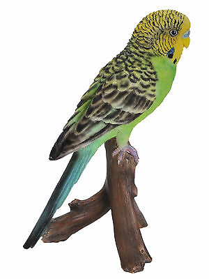 Vivid Arts Budgie Budgerigar Green