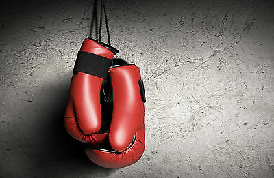 Boxing Poster 8 (4 Sizes A5-A4-A3-A2) + A Free Surprise A3 Poster  Gym/Fitness