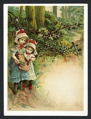 LITTLE GIRLS In the Woods - Victorian Greeting Card 1880's - Picking Berries