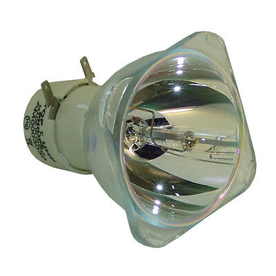 Philips 5J.J3S05.001 Replacement Bulb for BenQ MX511 Projector Lamp Projection