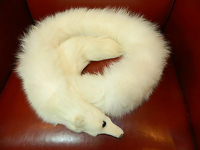 ARCTIC WHITE FOX FUR COLLAR STOLE SCARF BOA WITH HEAD WEDDING n 126