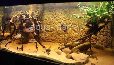 Aquarium Fish Tank 3D Thin Background Vivarium Reptile 3D Background 1-2 cm deep