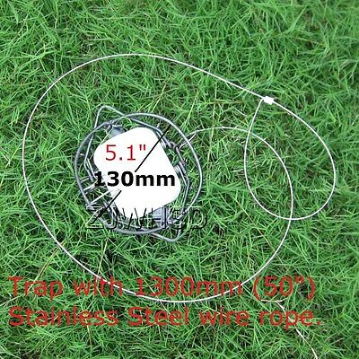 """Pest Control Mouse Rat Rodent Steel Spring Snare Trap &50"""" Stainless Steel Wire"""
