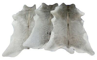 Gray Calf Skins Set of Three Gorgeous Calfskins Size 35 X 28 inches aprx