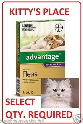 Advantage Flea Treatment for LARGE CATS over 4kg