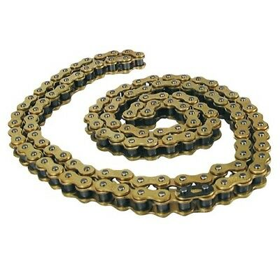 Bcr 40 580 1005 Catena 428X140 Gold S/O-Ring