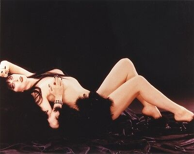Cassandra Peterson aka Elvira Mistress of the Dark UNSIGNED photo - 3808