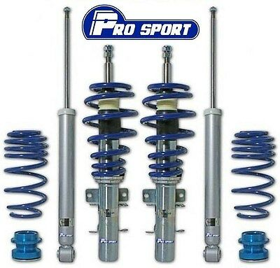 Ford Fiesta Mk6 Coilovers - Adjustable Coilover Suspension Lowering Kit