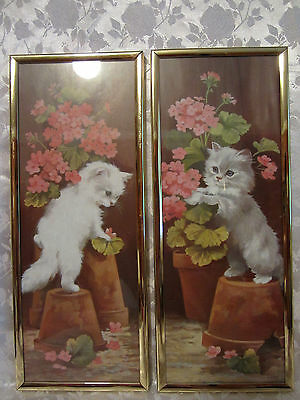 """Set of Framed Pictures Curious White Cats Kittens Gold Tone Frames 14"""" x 5.50"""""""