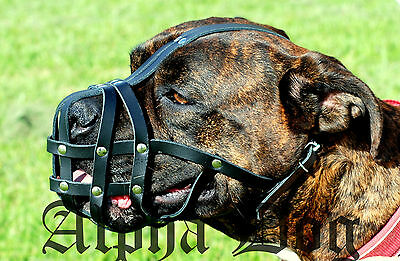 Boxer Muzzle, real leather, black or natural