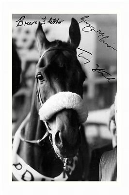 Tommy Stack & Ginger Mccain & Brian Fletcher Signed A4 Pp Poster Photo