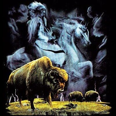 Buffalo & Native American on Horse T Shirt & Tank Tops All Sizes & Colors (784)