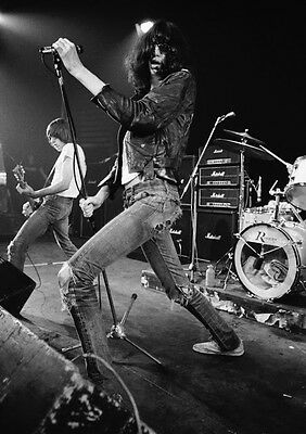 Art print POSTER / CANVAS The Ramones on Stage