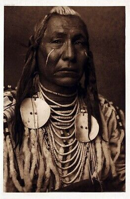 Native American Indian Portrait Red Wing Photo Art Print Picture