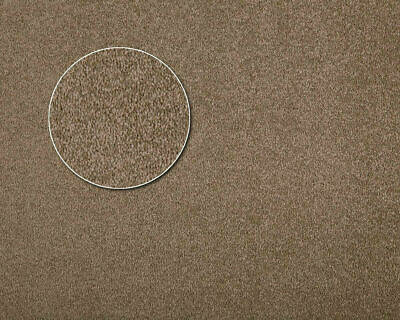 Carpets|Australian Made|55oz|$32.90 psqm| 100% solution Dyed NYLON|FAWN