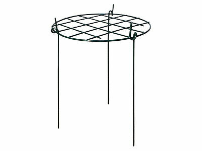 Round Grow Through Plant Support for Peonies, Lupin. etc - Strong Metal Garden S