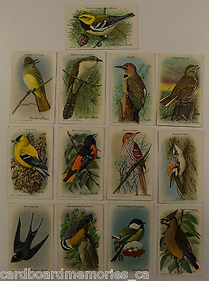 Tobacco Cards - Useful Birds of America by Church & Dwight Limited - Lot of 13