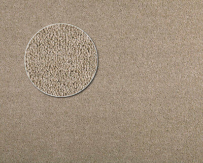 Carpets|Australian Made|30oz|$22.90 psqm|100% solution Dyed Olefin|Mapple-NEWEST