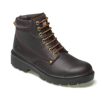 Dickies Antrim Leather Safety Work Boot Steel Toe Cap Brown Sizes 8