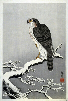 Japanese Bird Picture Woodblock Vintage Art Print By Ohara Shoson