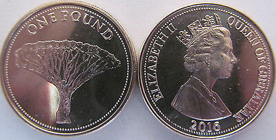 "New!!! Gibraltar 1 pound 2016 ""Dragon Tree"" UNC"