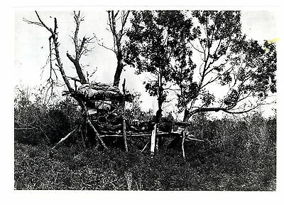 Vintage Native/Aboriginal Burial United Church Archives Photo Blood Indian