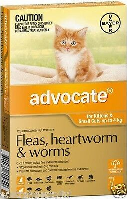 Advocate Flea and Worm Treatment For Small Cats Up To 4kg -  6 pack