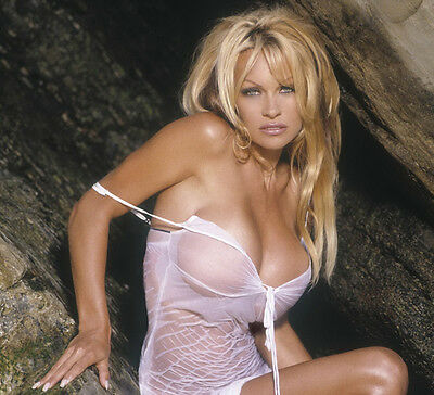 Pamela Anderson UNSIGNED photo - D96 - STUNNING!!!!!