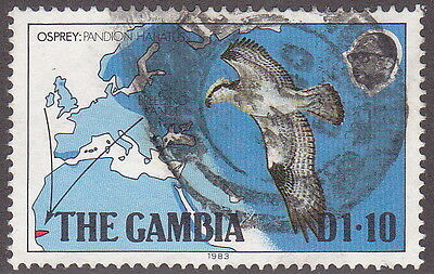 MKartifacts The Gambia Sc 488, SG 513 Used Osprey Bird