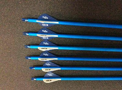 "12 X 31"" Carbon Arrows Blue Pattern Compound Or Recurve Bow Target Archery"