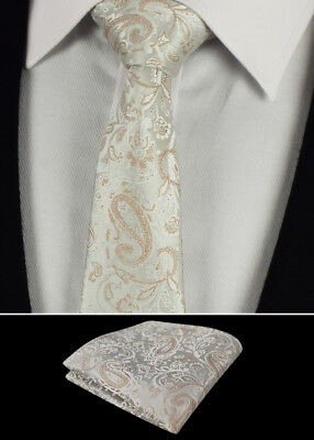 Mens Tie Handkerchief Wedding Necktie Hanky Cream Paisley Woven Silk Ties