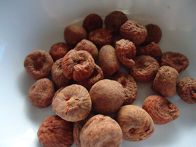 Betel nut (Indian Hard); Areca Catechu; 454g