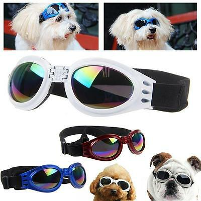Small Pet Dog Goggles UV Sunglasses Sun Glasses Glasses Eye Wear Protection KY