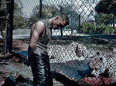 Colton Haynes UNSIGNED photo - D1428 - With leopards!!!!