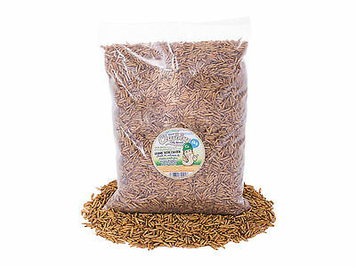 5Kg Chubby Dried Calciworms / Calci Worms Wild Birds, Fish, Reptile, Rodent Food