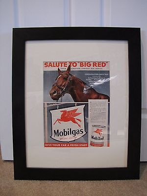 "Framed Vintage 1950s Life Magazine Ad: Mobilgas Salute to ""Big Red"" (Man O' War)"